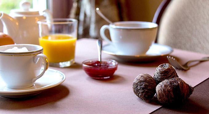 Romerel-Petit déjeuner web